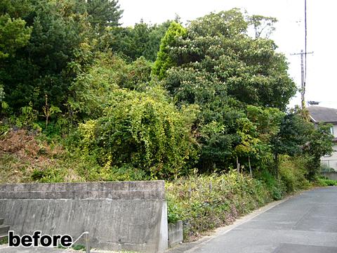 富塚丸山b1
