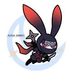 ninjarabbit
