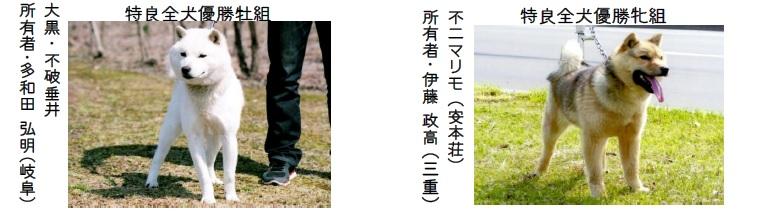 第23回岐阜支部展-06