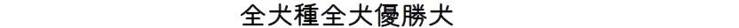 第23回岐阜支部展-07