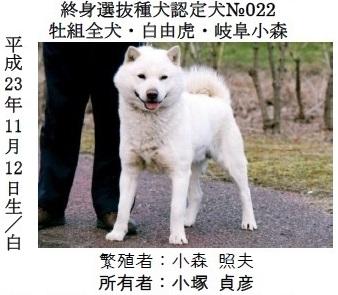 第23回岐阜支部展2-03