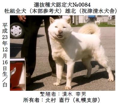 第70回本部展北海道-03