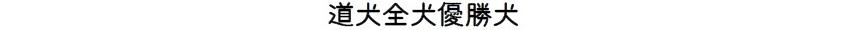 第70回本部展北海道-02