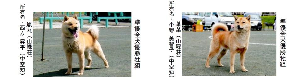 第70回本部展北海道-06
