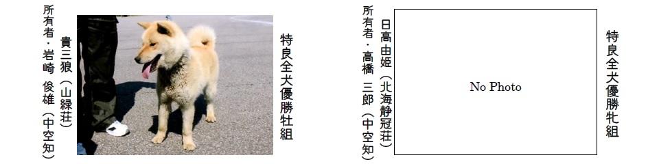 第70回本部展北海道-07