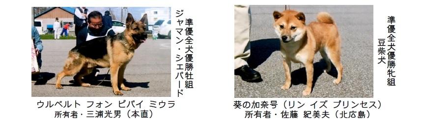 第70回本部展北海道-12