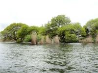 20160418琵琶湖05