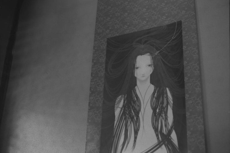 miho sadogawa panta パンタレイ カラー フィルム 白黒現像 モノクロ 写真