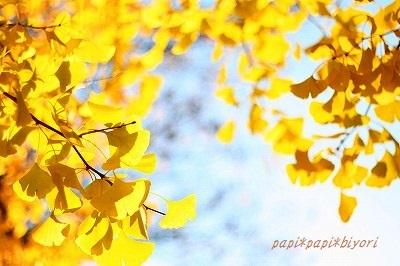 Autumn Park ★3