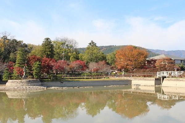 2015.12.10 長岡天満宮①(紅葉)-5
