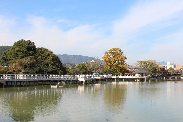 2015.12.11 長岡天満宮②(紅葉)-10