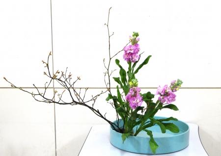 DSC00972-盛り花151207