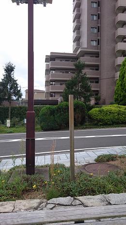 ①エントランスに四方八方に向けて立ててあった『公園に犬を入れないでください』の看板が撤去され、棒だけが残っています。