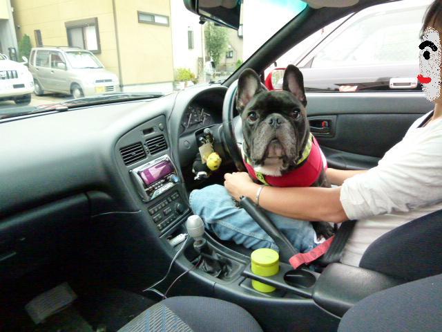 1ドライブ