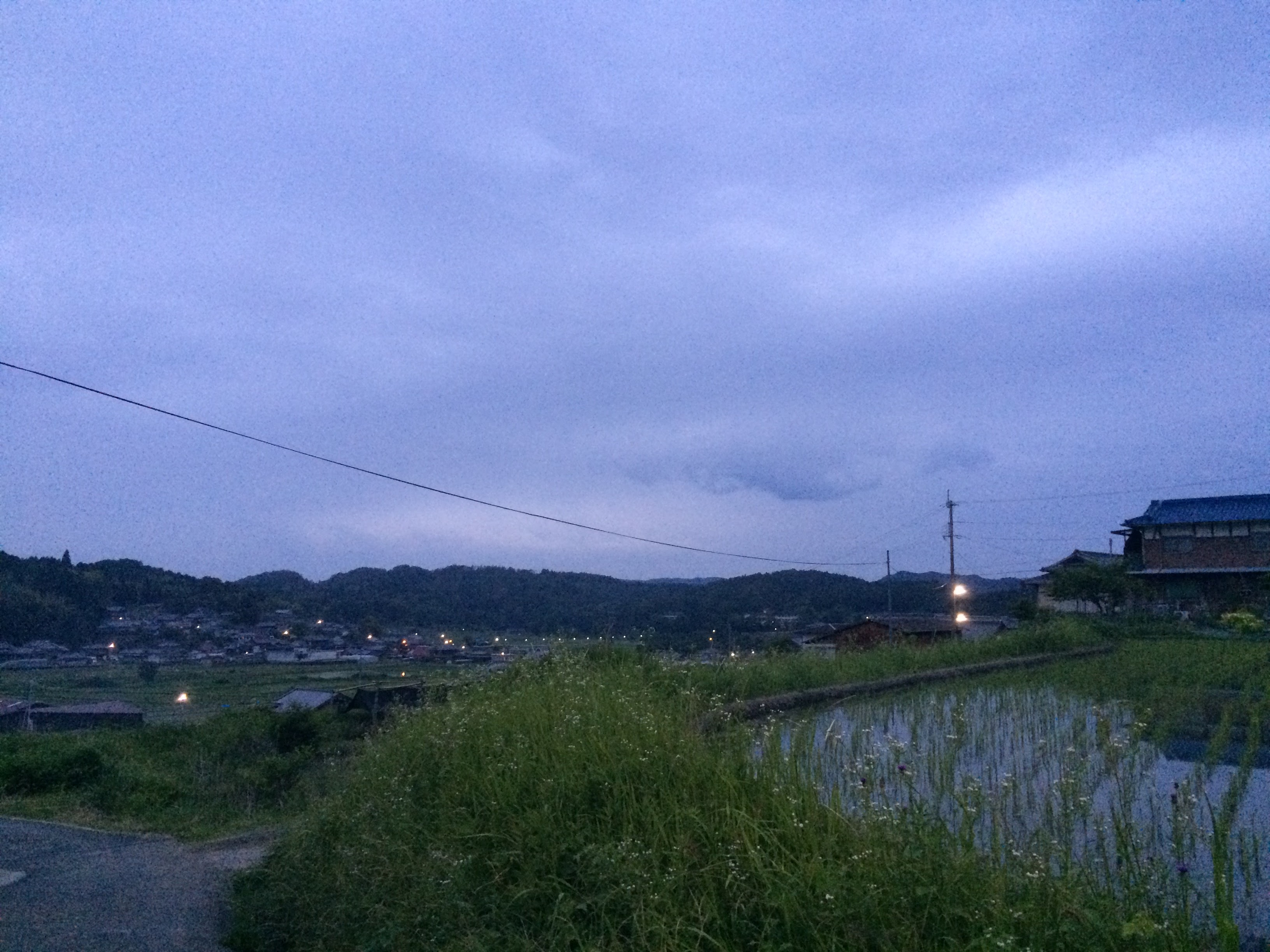 IMG_7681.jpg