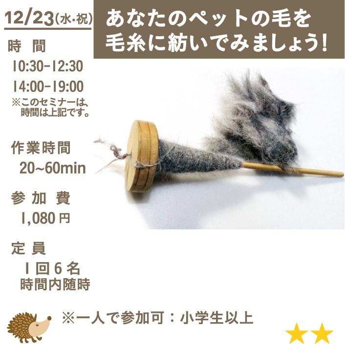あなたのペットの毛を毛糸に紡いでみましょう!