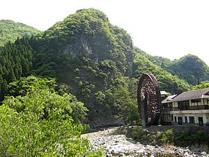 因尾茶 川2