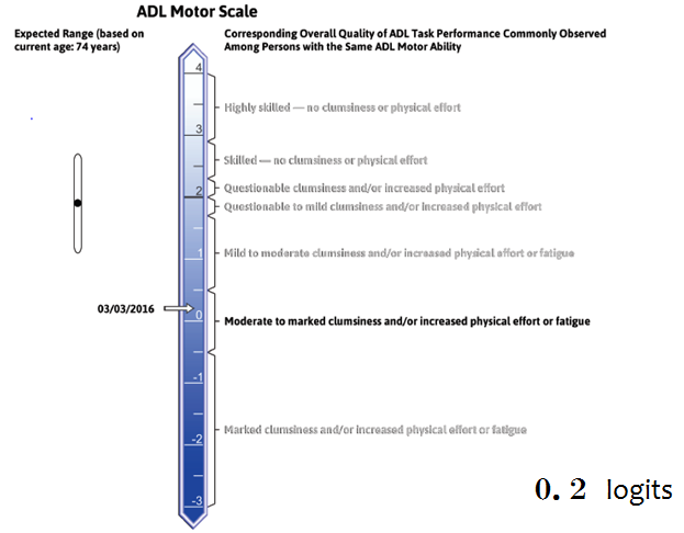 AMPS運動技能の見本