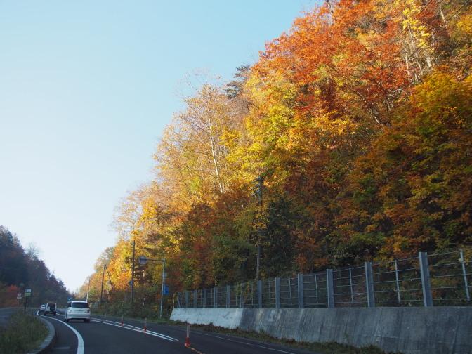紅葉の中、支笏湖方面に向けて国道453号線を進む