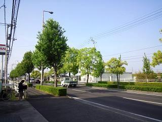 20150510高松空港へ(その12)