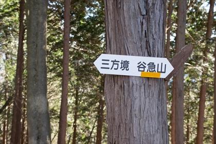 2015-11-28 裏妙義65 (1 - 1DSC_0081)_R