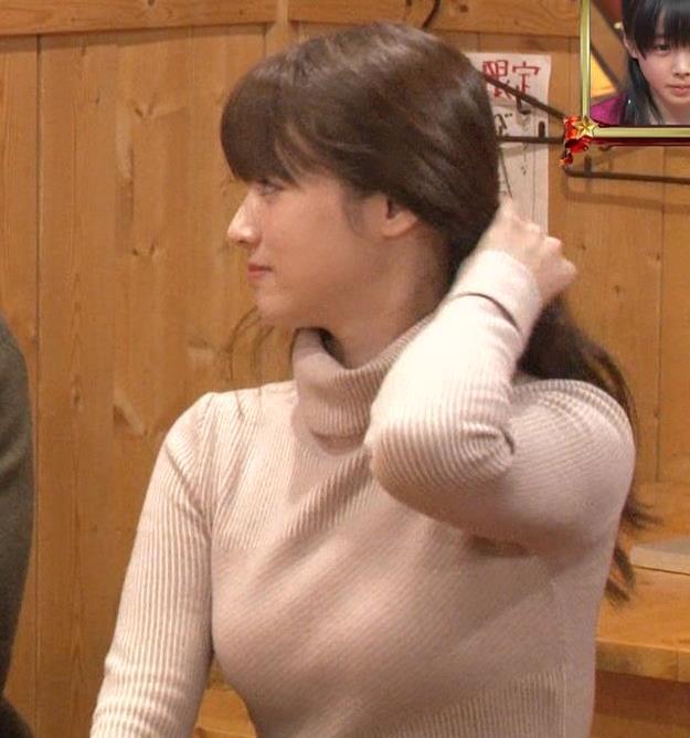 深田恭子 おっぱい画像5