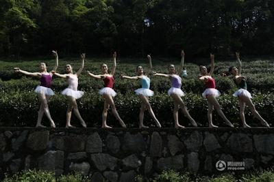 中国・杭州 レオタード美女軍団茶摘 2
