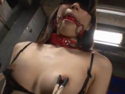 幽閉された元お嬢様 - エロ動画 アダルト動画