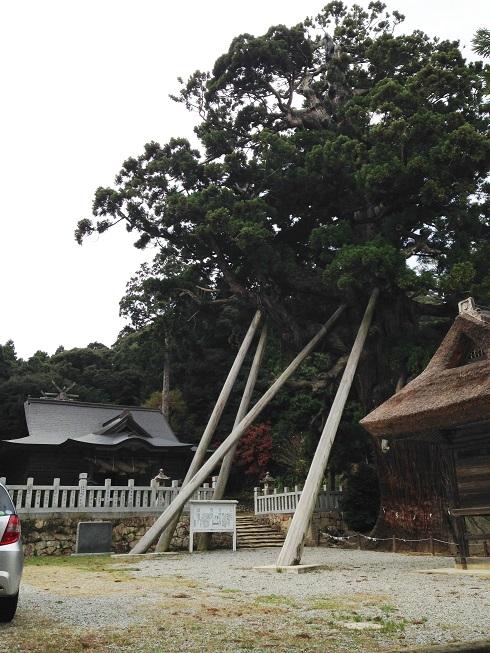 2015隠岐の島 (12)