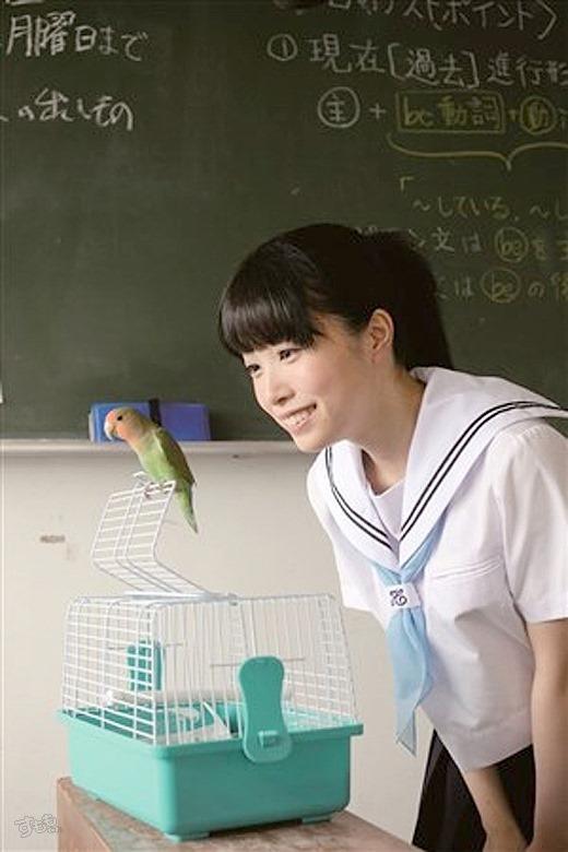 もりの小鳥 77