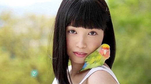 もりの小鳥 107