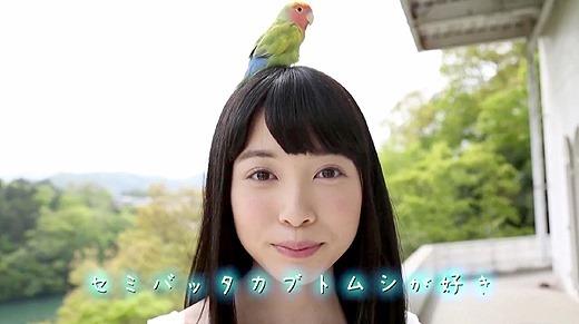 もりの小鳥 113