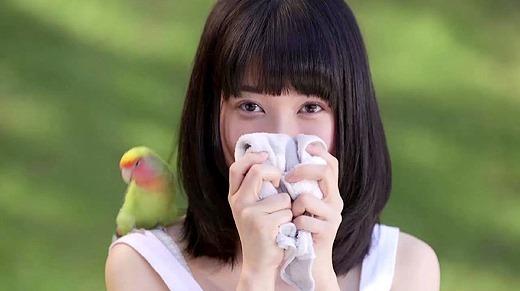 もりの小鳥 123