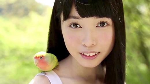 もりの小鳥 140