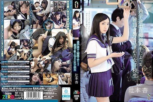 通学途中に痴〇の手によって絶頂を教え込まれた女子校生 辻本杏