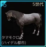 交配5♂01