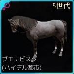 交配8♀01