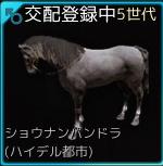 交配17♂01