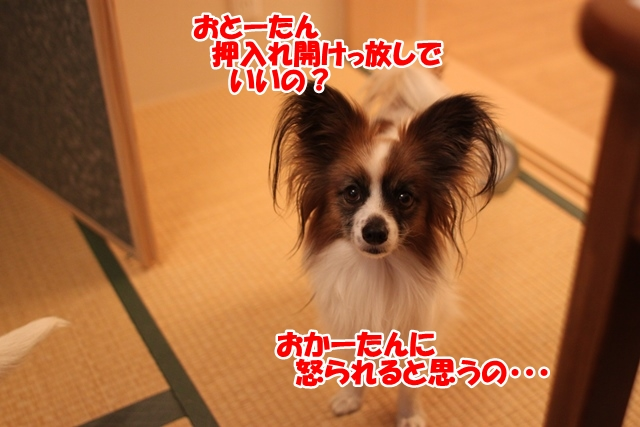 IMG_9377.jpg