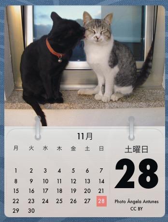 Cal_Cat
