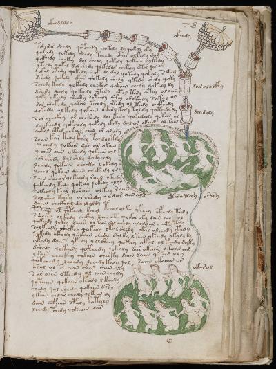ボイニッチ手稿
