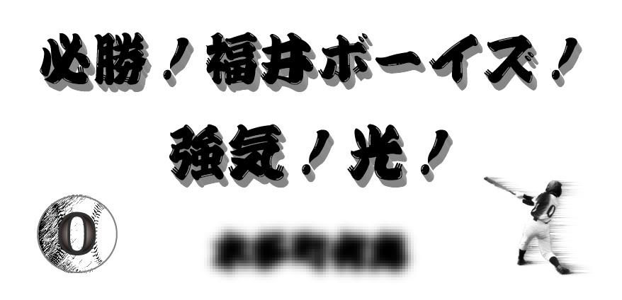 2016福井県ボーイズ協賛ロゴ01