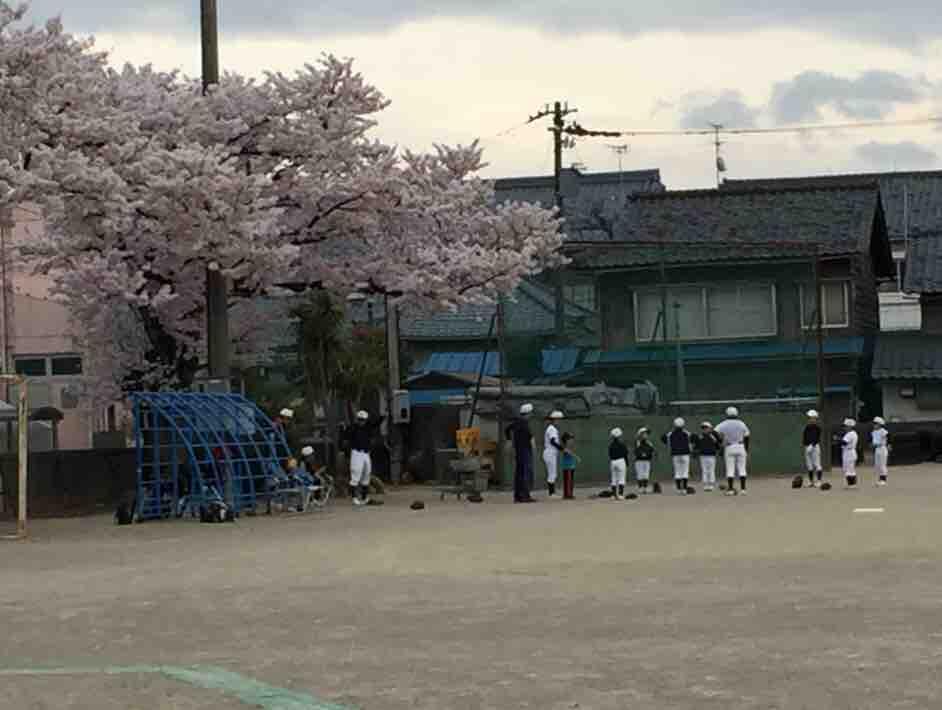 武生東キッズ少年野球_新入部員