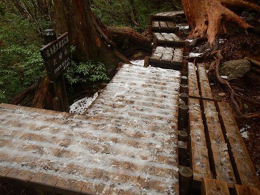 木道の凍結