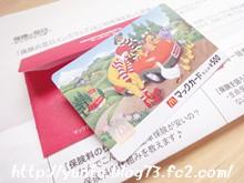 インズウェブ マックカード500円分