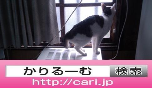 moblog_40f3e400.jpg