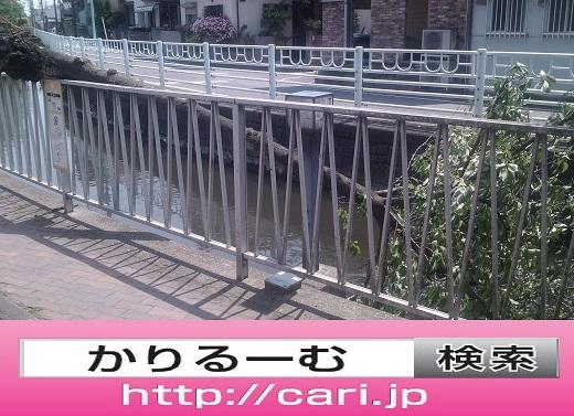 moblog_9a428d8e.jpg