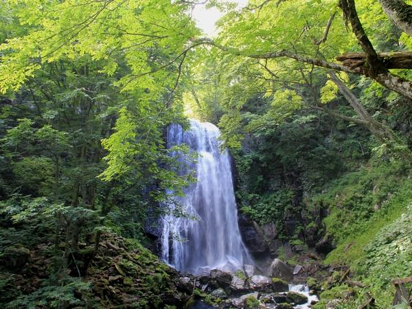fudoutaki-natu1-web600.jpg