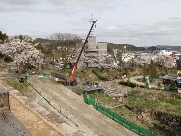 kominejyo-sakura11-web600.jpg