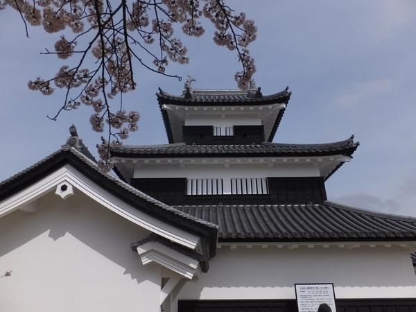 kominejyo-sakura6-web600.jpg
